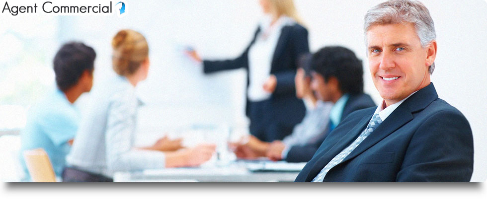 Expert comptable spécialisé agents commerciaux
